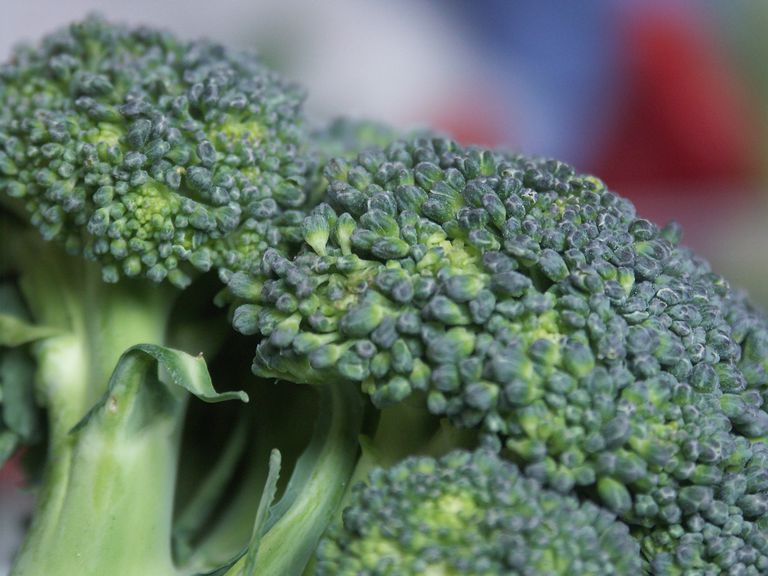 Close up of a head of broccoli