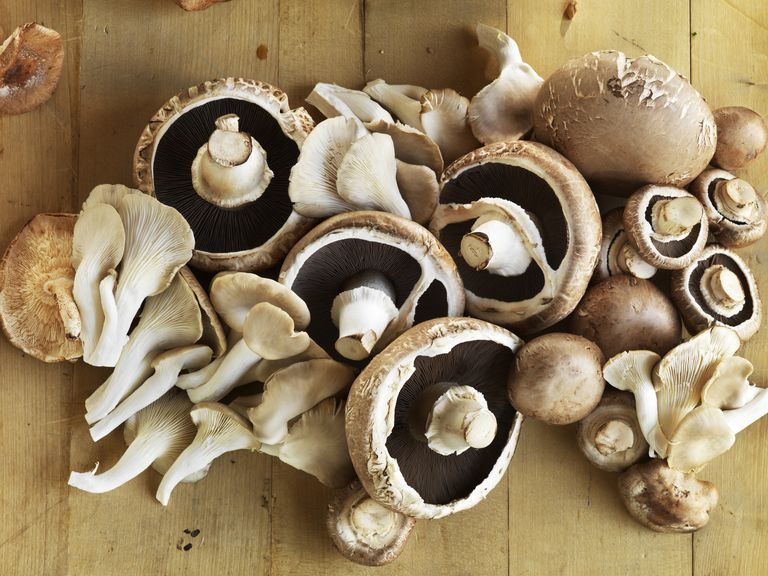 mushroom nutrition facts calories carbs and benefits
