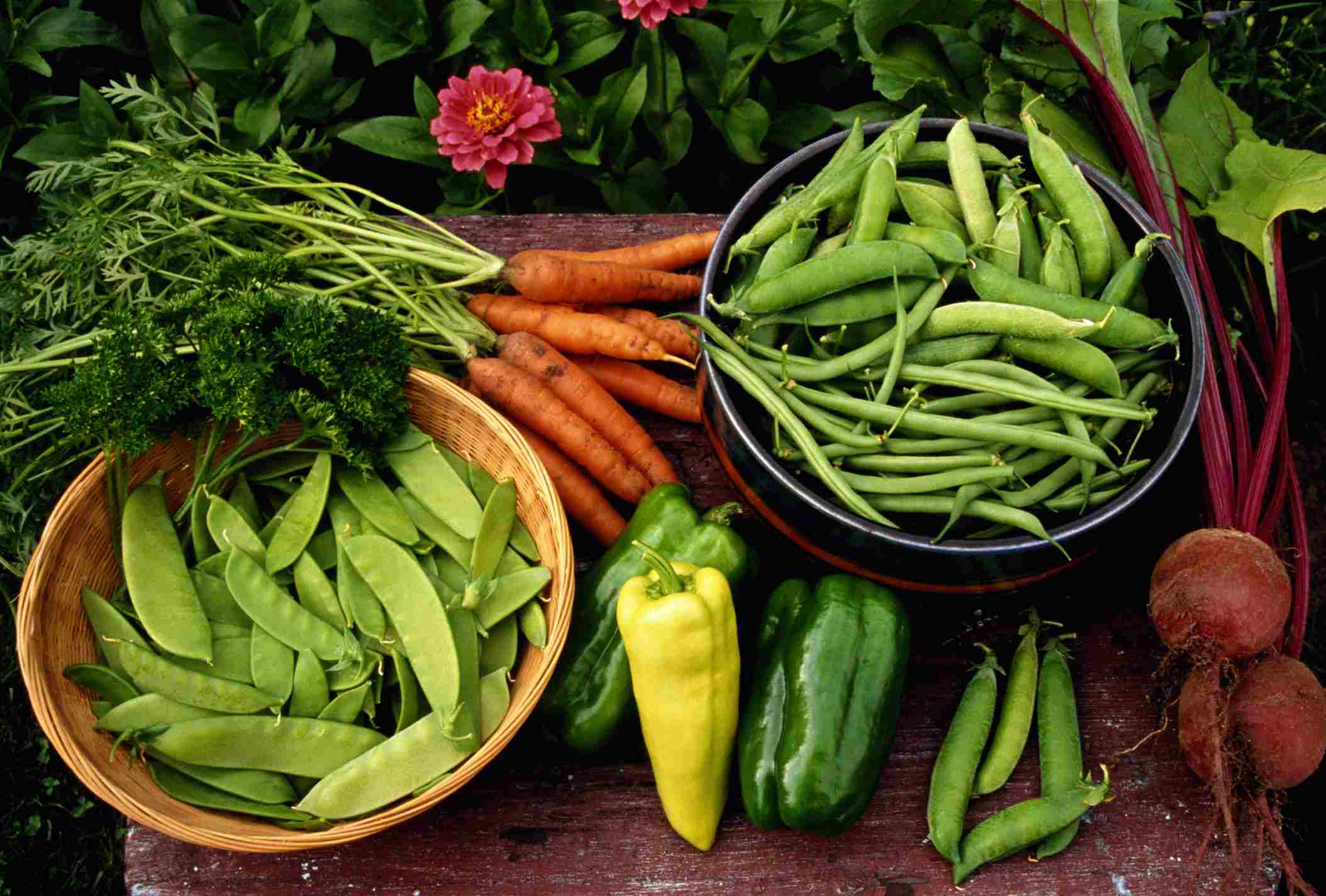 Vegetables will improve your diet.