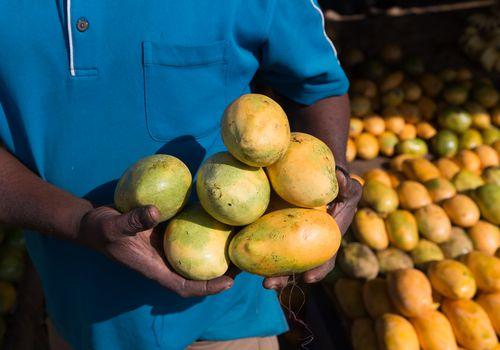 Vendedor de mango con mangos