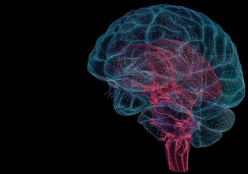 estimulación del nervio vago para bajar de peso