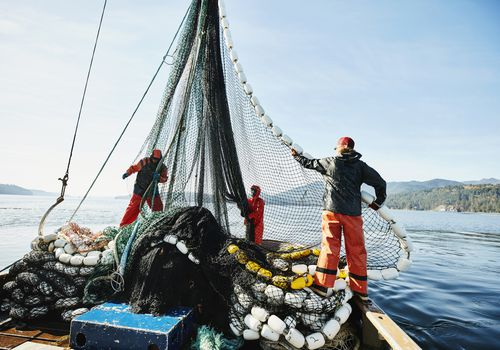 Men with nets on a fishing boat